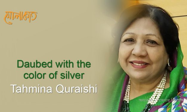 Daubed with the color of silver_Tahmina Quraishi